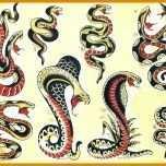 Großartig Schlangen Tattoos Vorlagen 800x600