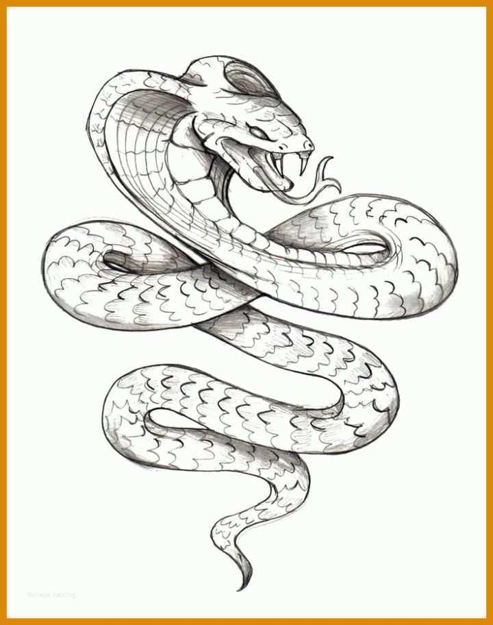 Größte Schlangen Tattoos Vorlagen 736x932